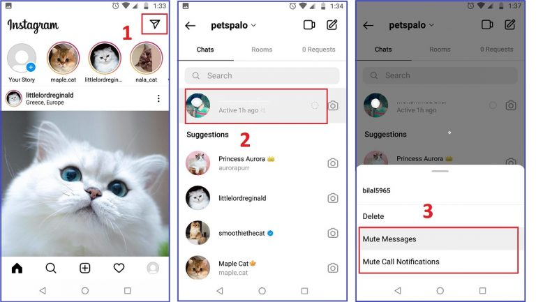 How to Mute Someone story and post on Instagram on Android